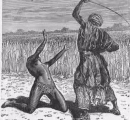 Vergija Amerikoje - Istorija