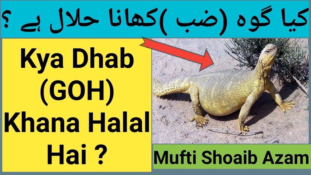 dvejetainiai variantai haram arba halal