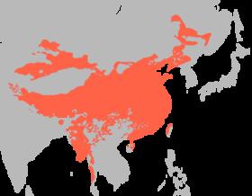 Kinijos juanių forex diagrama