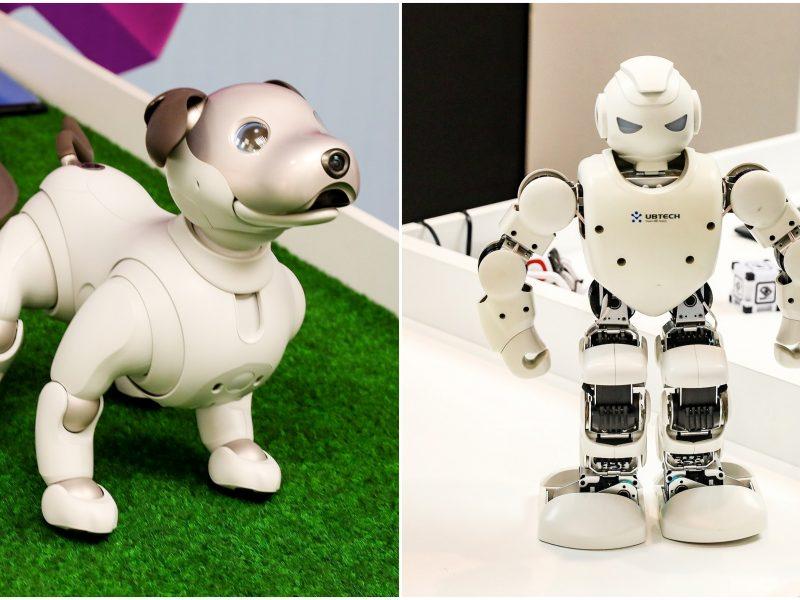 Kiek kainuoja robotas prekybai biržoje, Kas yra Forex robotai?